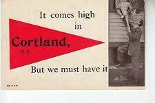 Red Printed Pennant Couple at a Window in Cortland NY