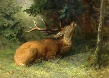 Oil painting wild animal deer Bucks injured under the tree landscape Hand painte