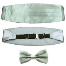 Generic Wedding Tie Cravat and Cummerbund for Men