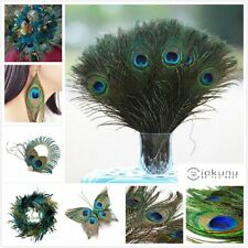 """10/20/50Pcs 100% Real Natural Peacock Feathers 10-12"""" Stage Costume Makeup Tool"""
