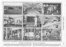 Vintage Print/Plate 1929 Encyclopedia Britannica DAIRY MACHINERY MILK PRODUCTION