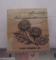 Stampin Up Single Stamp Flower of the Month November Chrysanthem Flower Birthday