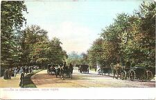 Horse & Buggy Driving in Central Park - NYC  New York Undivided Back Postcard