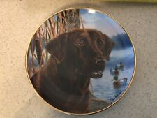 """Franklin Mint Royal Doulton 9� Labrador Retiever Coll. Plate """"Ready For Action�"""