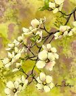 ACEO ATC Art Card Painting Print Signed Grace Dogwood Tree Flower Floral