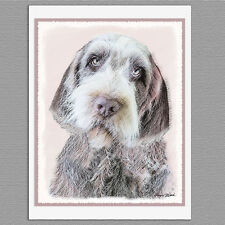 6 Wirehaired Pointing Griffon Blank Art Note Greeting Cards