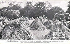 Stoke Poges. Crop Grown by R C. Lee, Colley Hill Using Hadfield's Manure. Wheat.