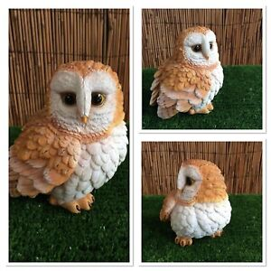 Vivid Arts - Little Barn Owl *indoor/Outdoor* Lovely detail