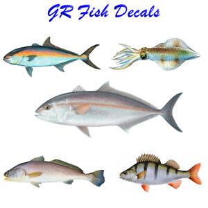 GR Australian Fish Decals - Adhesive