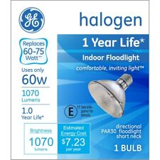 GE  60 watts PAR30  Halogen Bulb  1070 lumens 1 pk Floodlight  White