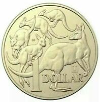 2019 ONE DOLLAR COIN - *MOB OF ROOS* -*MINT MARK U & PRIVY 35* -EX MINT BAG -UNC