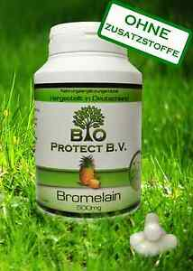 Bromelain 500 mg- 120 Kapseln- 2000GDU- Bio Protect Ananas Enzym ohne Zusätze