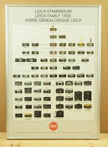 vtg Leitz LEICA STAMMBAUM FAMILY TREE 1913-1979 poster ~ framed professionally