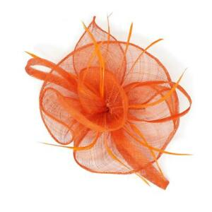 Fascinator Alice Headband Clip Feathers Hat Wedding Race Royal Ascot Head Piece