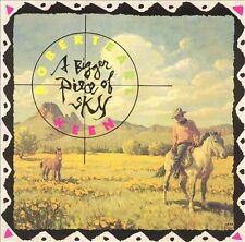 ROBERT EARL KEEN - Bigger Piece Of Sky - 11 TRACK MUSIC CD - LIKE NEW - H850