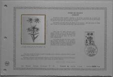 Document Artistique DAP 580 1er jour 1983 Carline Flore de France