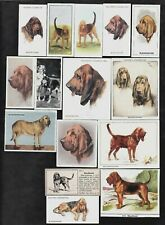 27 Different Vintage BLOODHOUND Tobacco/Cigarette/Tea Dog Cards Lot