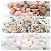 1/2lb Natural Stones and Pea Gravel for Bonsai Terrarium Succulent Air Plant