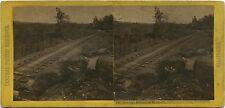 C.P.R.R Hart/Watkins series # 142 Antelope Ridge near Newcastle 1860's