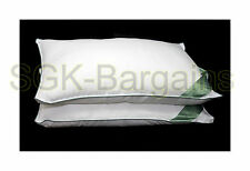 Luxury Pillow Hotel Quality Pair of Hypoallergenic 100 Egyptian Cotton Pillows