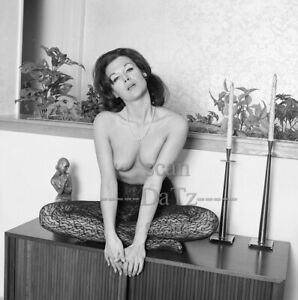 1960s Negative-nude brunette pinup girl Julie Westin-cheesecake t74359