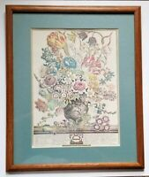 ROBERT FURBER GARDINER MARCH BOTANICAL FRAMED LITHOGRAPH PRINT 1730 KENSINGTON