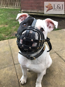 Light Real leather Dog Muzzle for Staffordshire Bull Terrier Staffy , Stafford