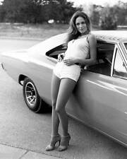 Catherine Bach Dukes of Hazzard 8x10 Photo 006