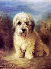Dandie Dinmont Terrier Dog Puppy Dogs Puppies Vintage Art Poster Print