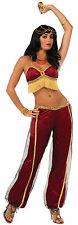 Womens Ruby Dancer Costume Belly Dancer Arabian Princess Adult Size Standard