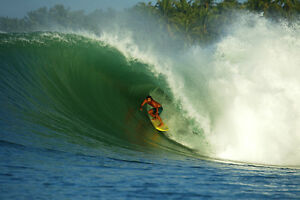 """Dave Rastovich 8x12"""" Photo from Mentawais Islands by Pete Frieden"""