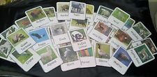 ZOO ANIMALS 72 FLASH CARDS- EDUCATIONAL - TEACHING  RESOURCE- EYFS - CHILDMINDER