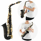Professional Saxophone Eb Alto Brass Carved Orchestral with Maintenance Tools