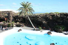 Beautiful Oasis Image Canary Island Lanzarote Digital Photo/Wallpaper/PictureJPG