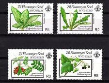 ZES 1989 Dieffenbachie Paternostererbse Nachtschatten Seychelles