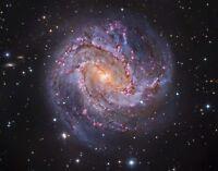 Hubble Telescope Photo-Stunning Thousand-Ruby Galaxy-Spiral Galaxy M83