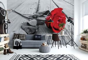 312x219cm Wall mural photo wallpaper Lonely red rose girls bedroom + adhesive