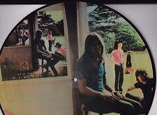 PINK FLOYD- UMMA GUMMA - VINYL PICTURE DISC LP - 30TH ANNIV. EDN (1999)  BRAZIL