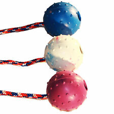 Nobby Hundespielzeuge aus Gummi
