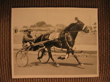 """Standardbred Race Horse """"Good Time"""" & trainer/driver Frank Ervin Vintage Photo"""