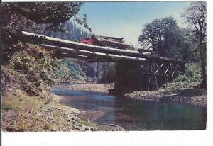 CB-421 Logging Time in the Northwest Chrome Postcard Washington Oregon