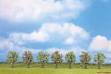 Obstbäume  blühend 7 Stück ca. 8cm Noch 25092