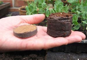 Coir pellets jiffy 7 pots plugs seed sowing 36mm peat free packs of 50 - 100