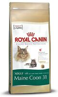 Royal Canin Maine Coon 31 Cat Adult Dry Cat Food Balanced and Complete Food 400G