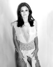 RACHEL BILSON 8X10 photo SHEER LACE TOP SO HOT! B&W
