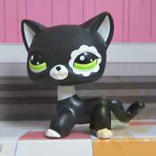 Littlest Pet Shop Animals Collection LPS Toy 2249 Short Hair Siamese Kitten Cat