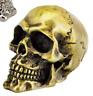 tete de mort crane garde boue moto skull bobber chopper ornament cuivre fender