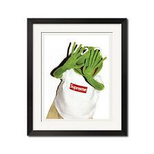 Supreme x Kermit x Terry Richardson Paparazzi Urban Street 22x28 Poster Print