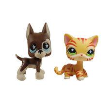 2pcs  littlest pet shop LPS figure Brown Great Dane Dog&orange tiger striped cat