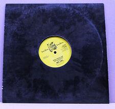 "Mr. Lee – Rock This Place [KOOL DJ 1, Vinyl, 12"", 45 RPM, Single, Limited Ed.]"